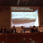 Calls for Independent International Inquiry into Violations to Ensure Accountability and End Impunity